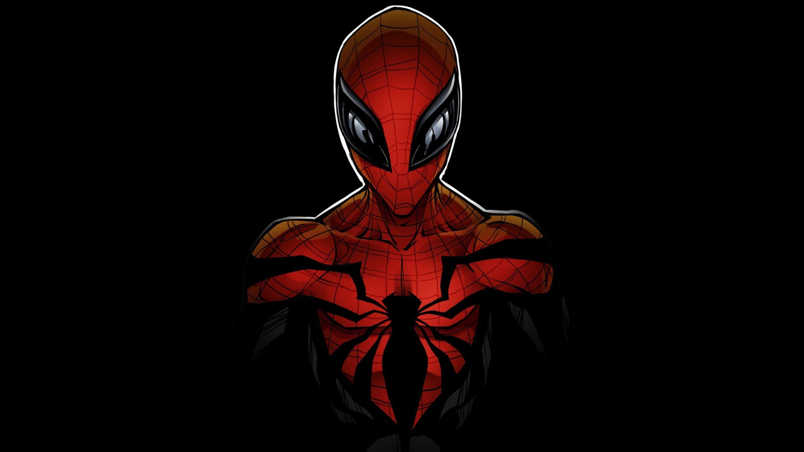 2560x1440 Spiderman Comicbook 1440P Resolution HD 4k ...
