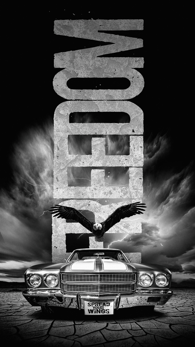 spread-your-wings-jr.jpg