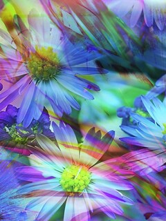 spring-flowers-abstract-pic.jpg