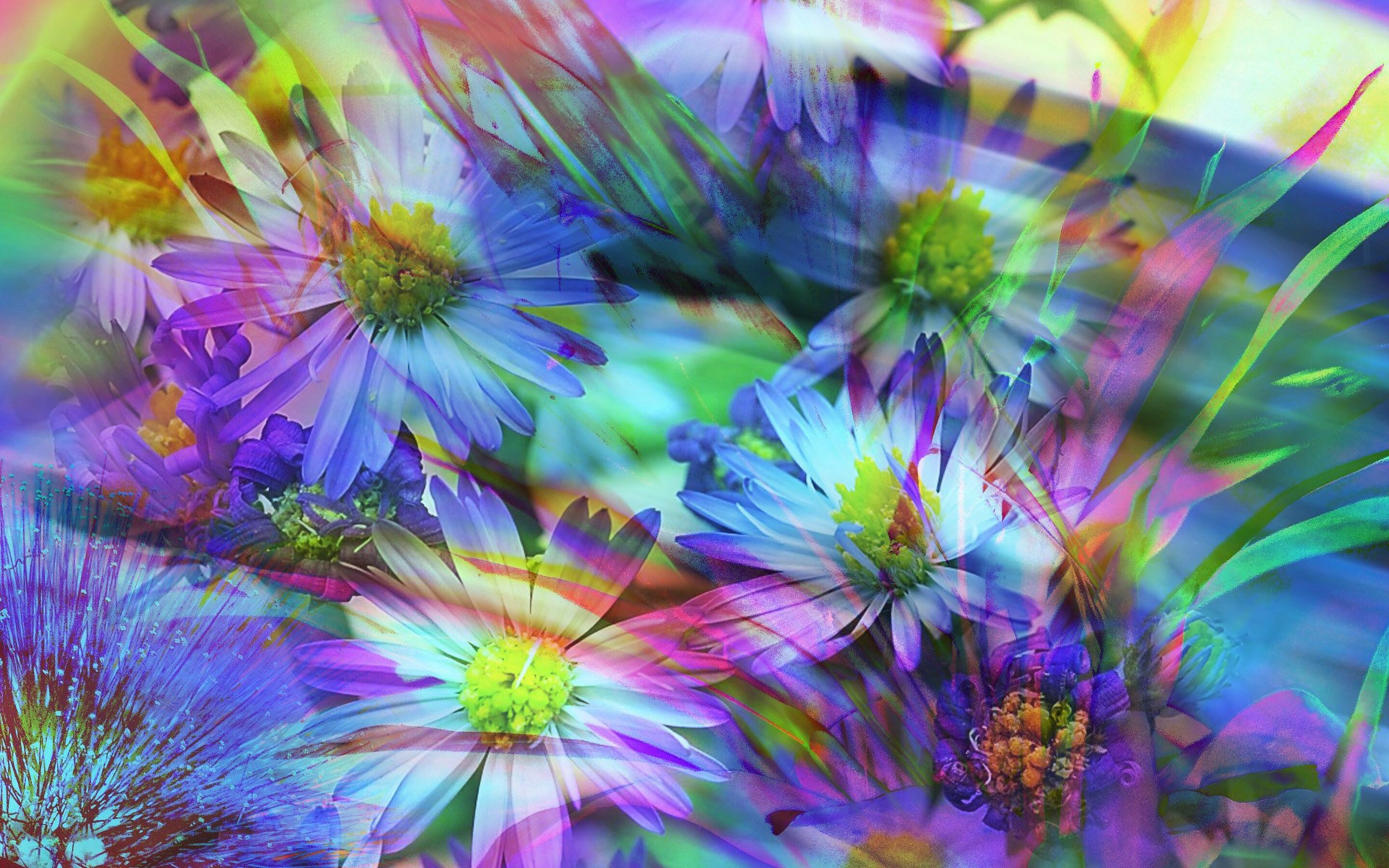 2880x1800 spring flowers abstract macbook pro retina hd 4k spring flowers abstract picg mightylinksfo