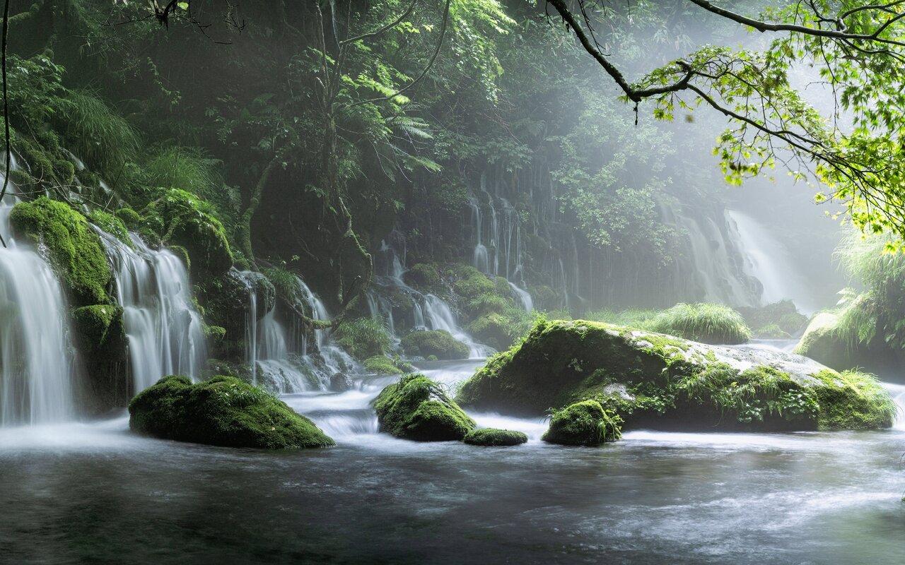 spring-waterfall-stone-fog-mist-green-forest-8k-eu.jpg