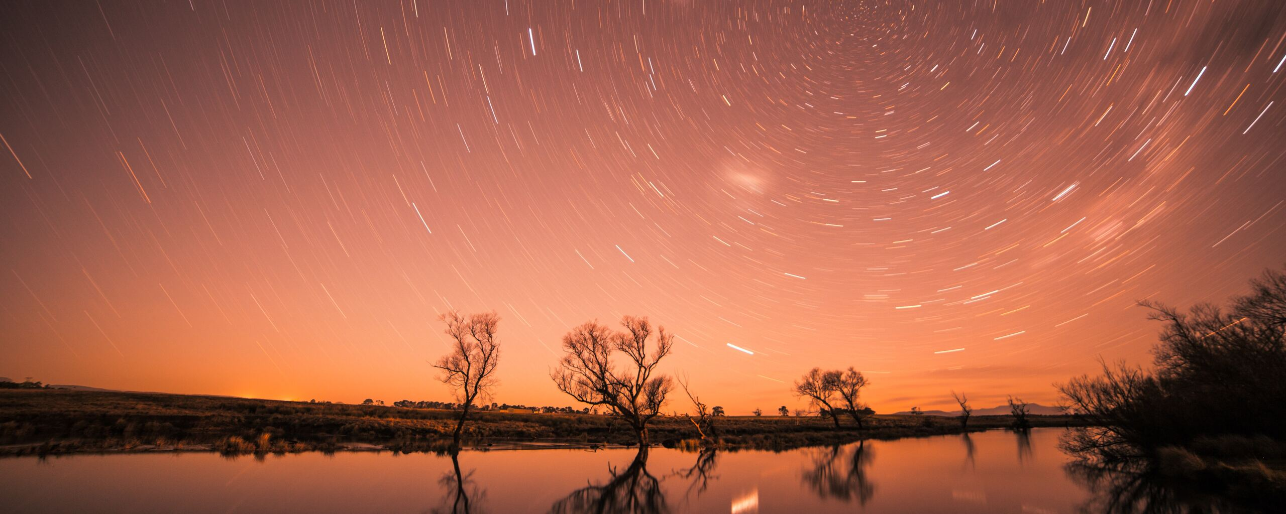 startrail-longexposure-trees-cool-jf.jpg
