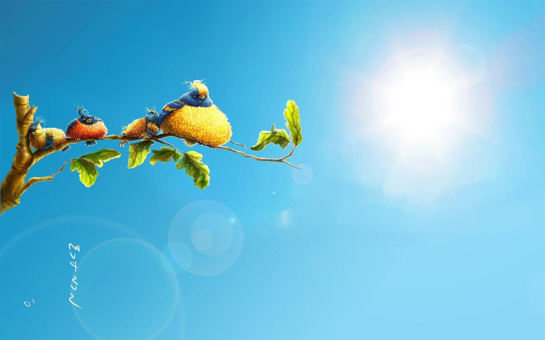 sun-birds.jpg