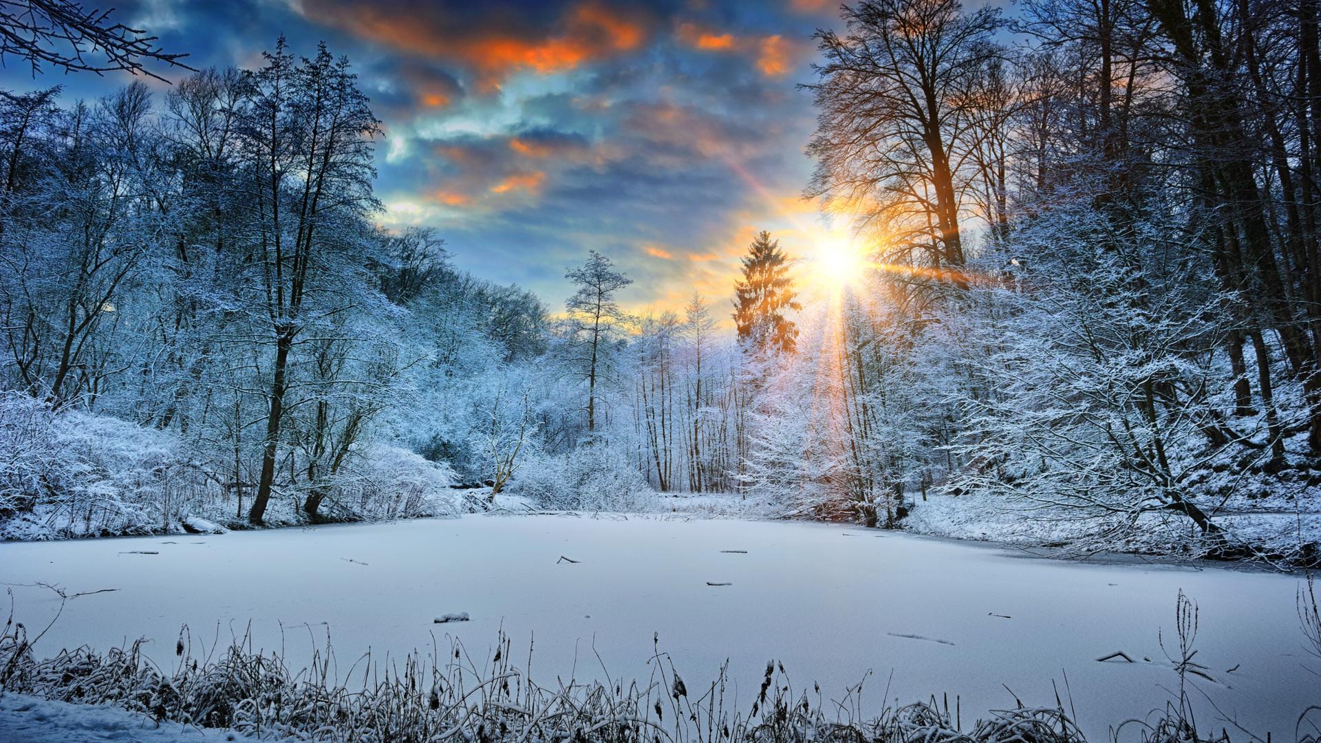 1920x1080 sunbeams landscape snow in winter trees 4k - Wallpaper hd nature winter ...