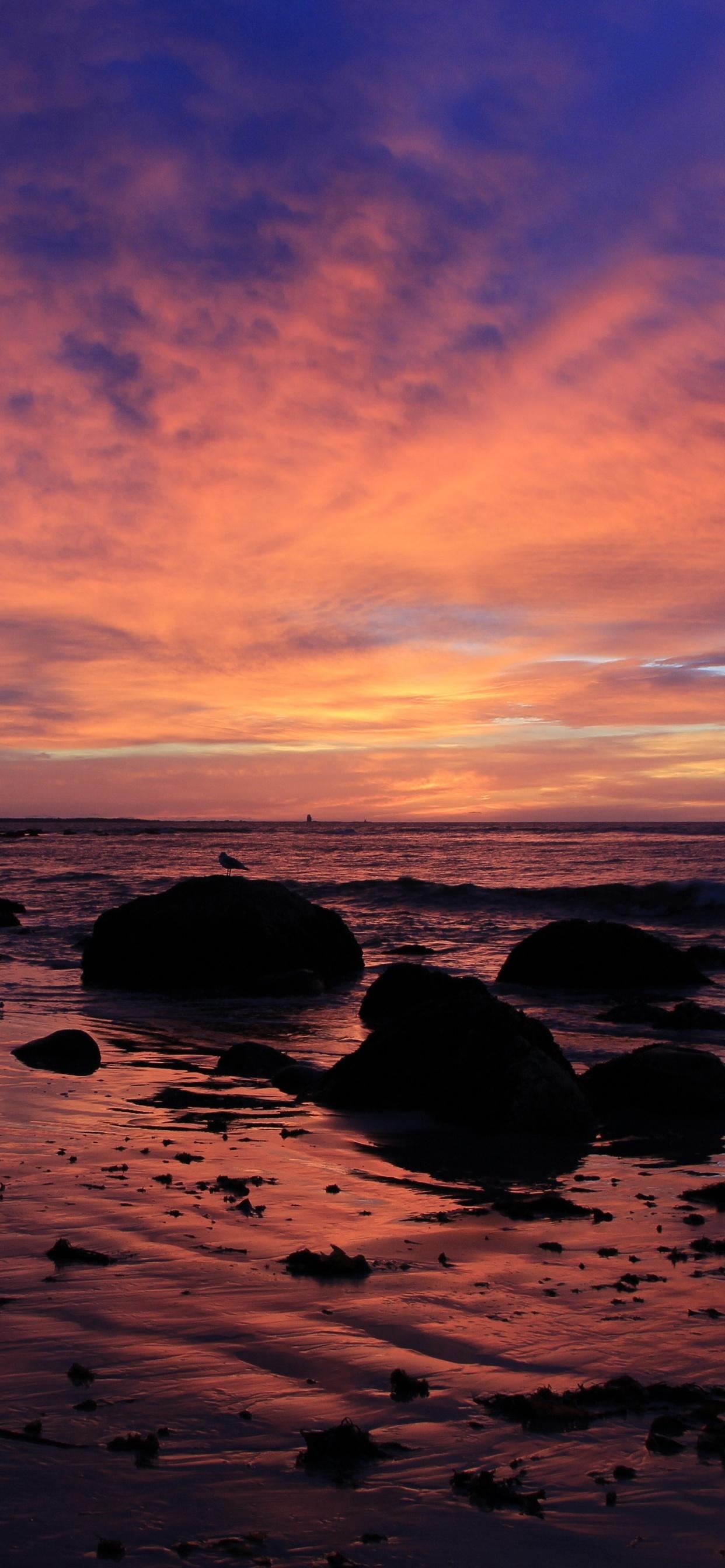 sunrsie-beach-ocean-sky-4k-ml.jpg