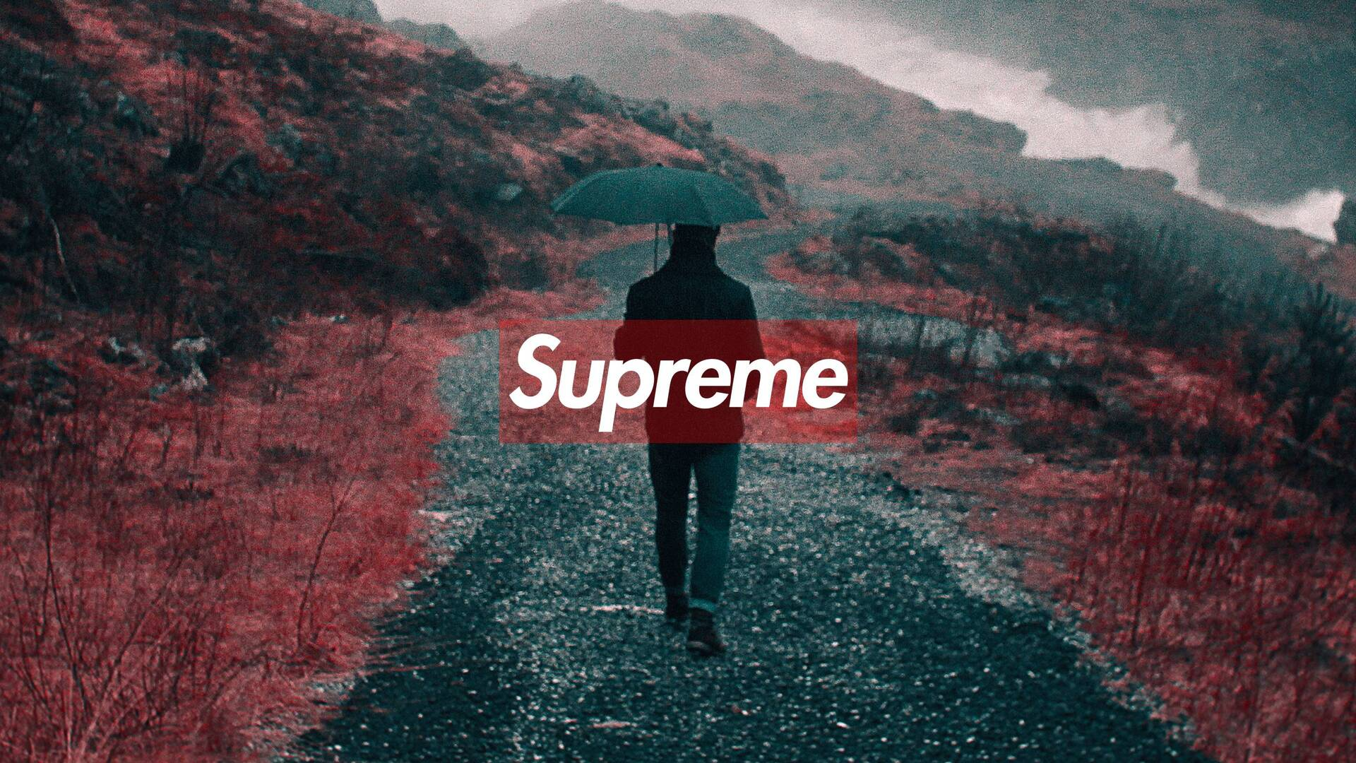 1920x1080 supreme laptop full hd 1080p hd 4k wallpapers, images