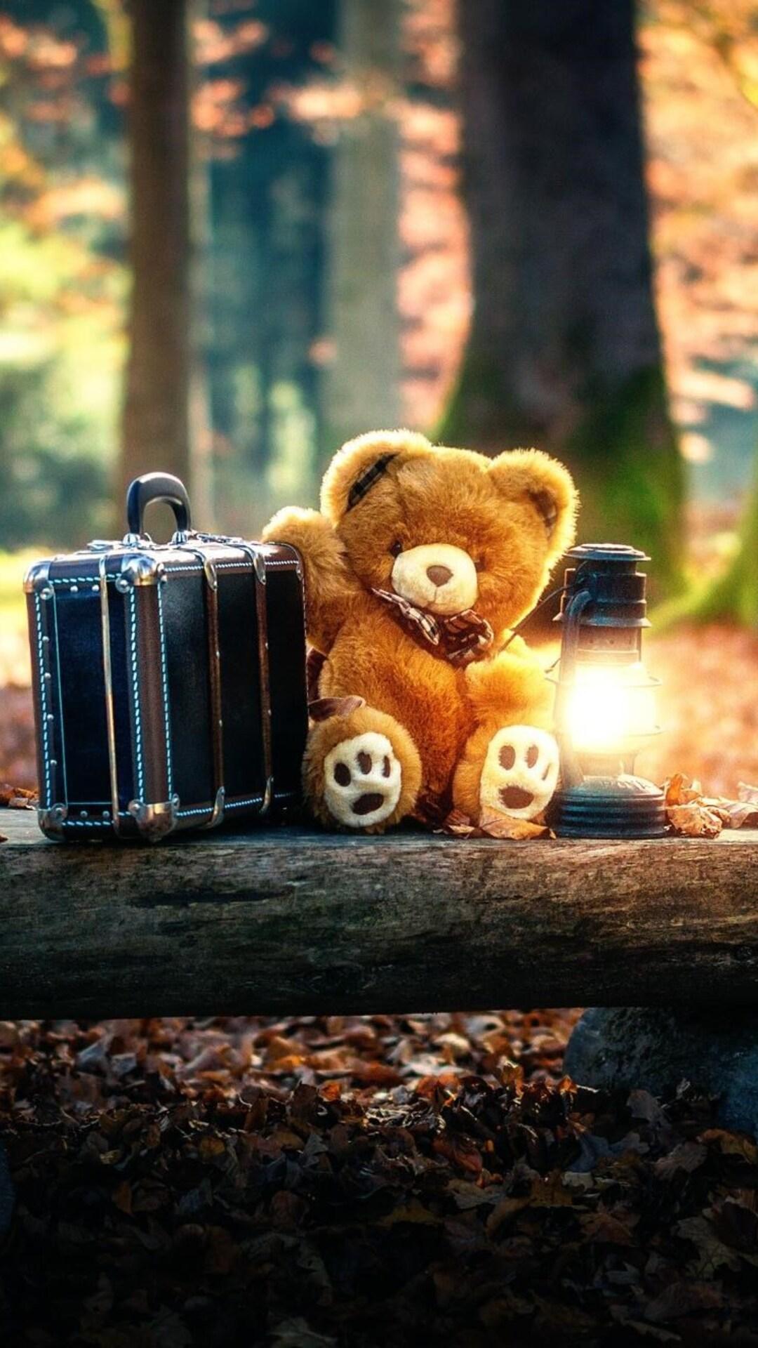 teddy-bears-cute-alone-in-forest.jpg