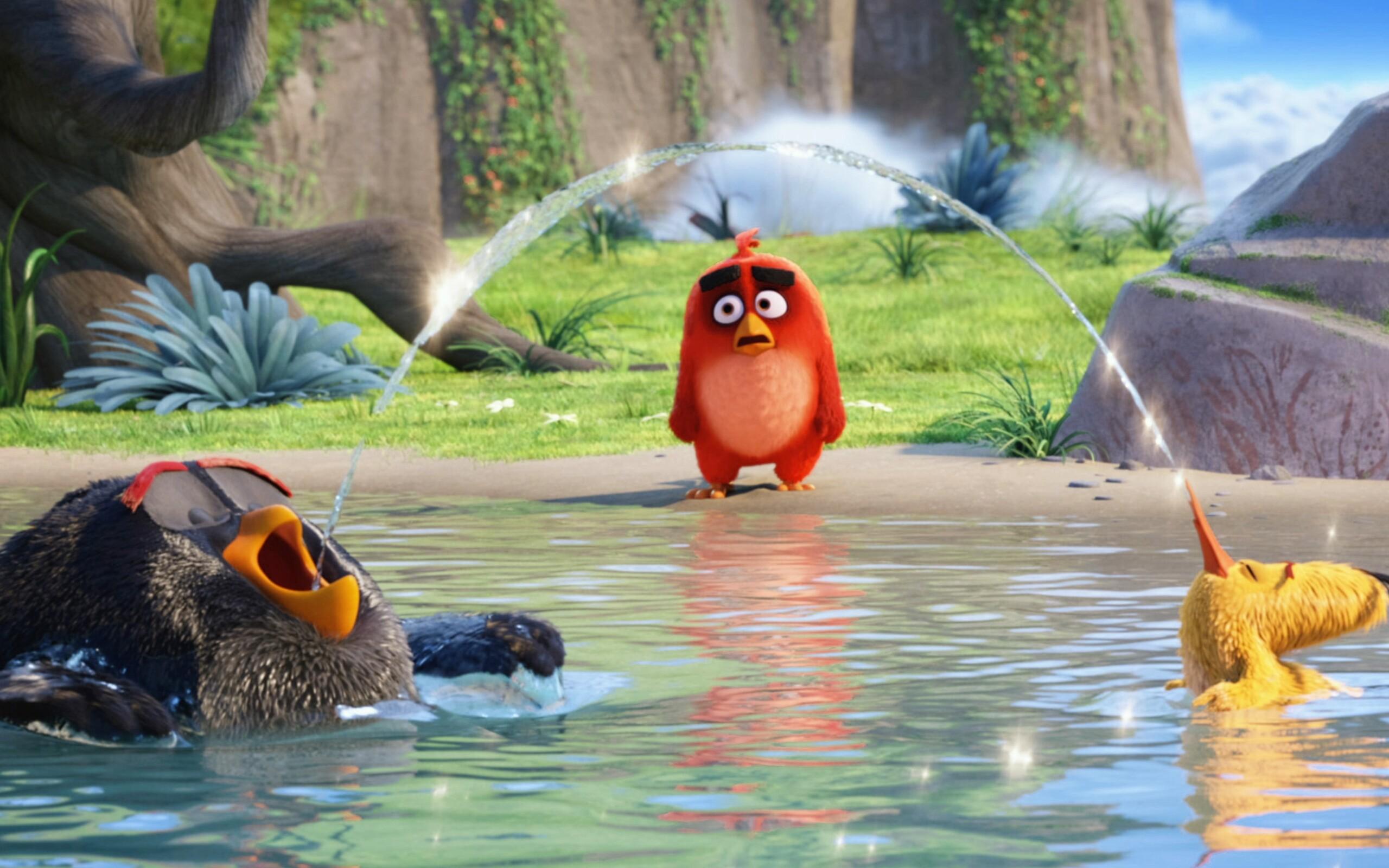 the-angry-birds-movie-latest.jpg