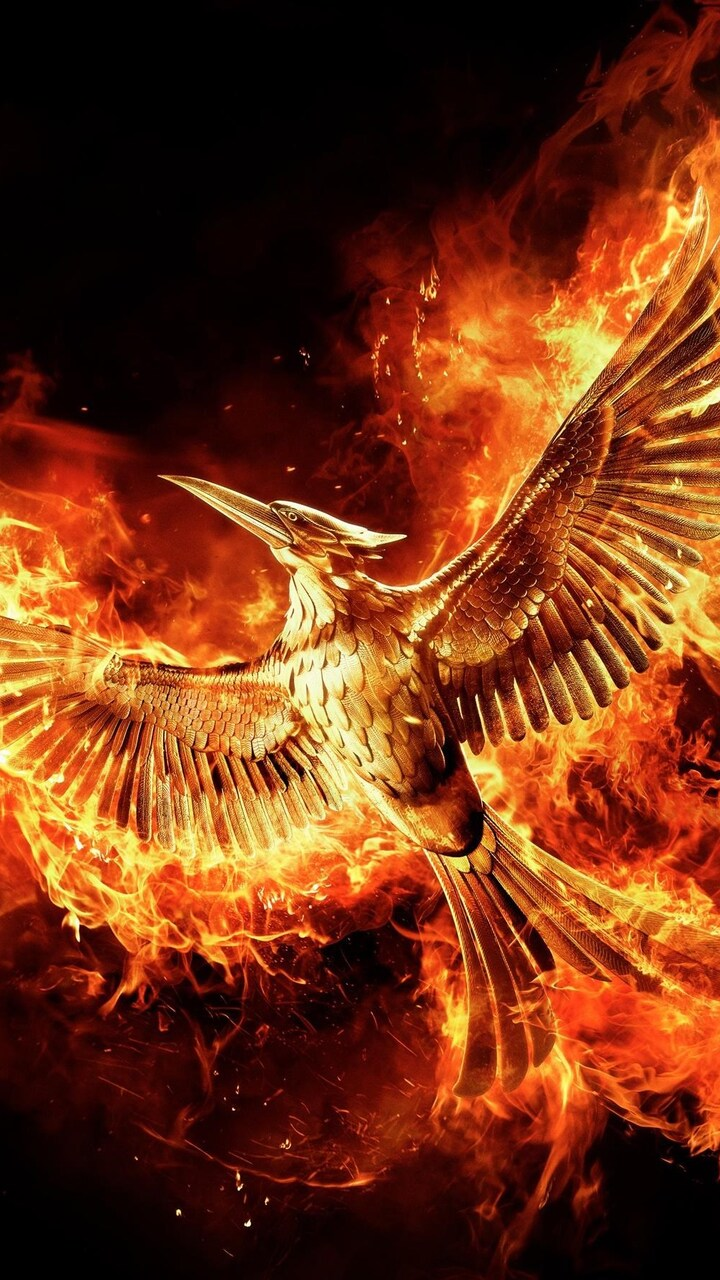 the-hunger-games-mockingjay-part-2-movie.jpg