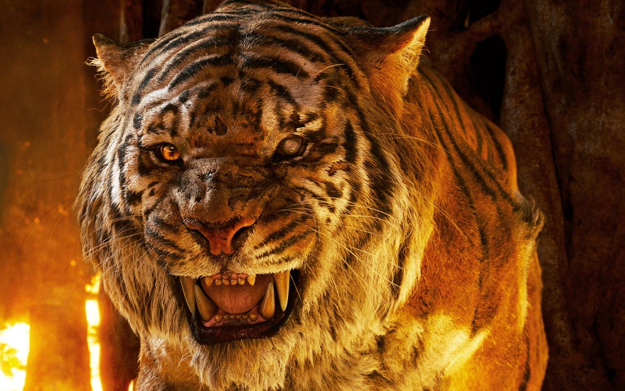 the-jungle-book-tiger-5k-xn.jpg