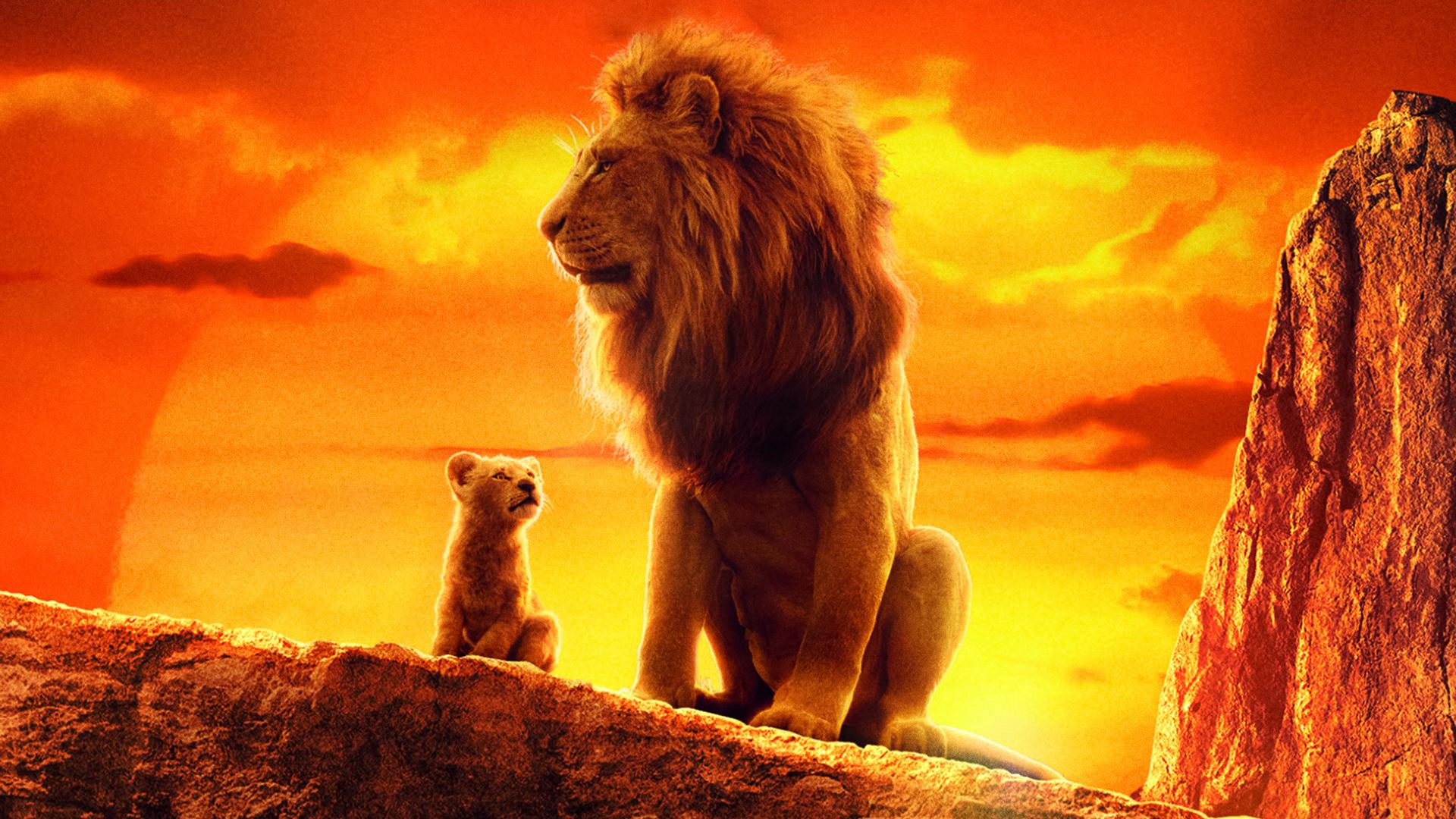 1920x1080 The Lion King 2019 4k Movie Laptop Full HD 1080P ...
