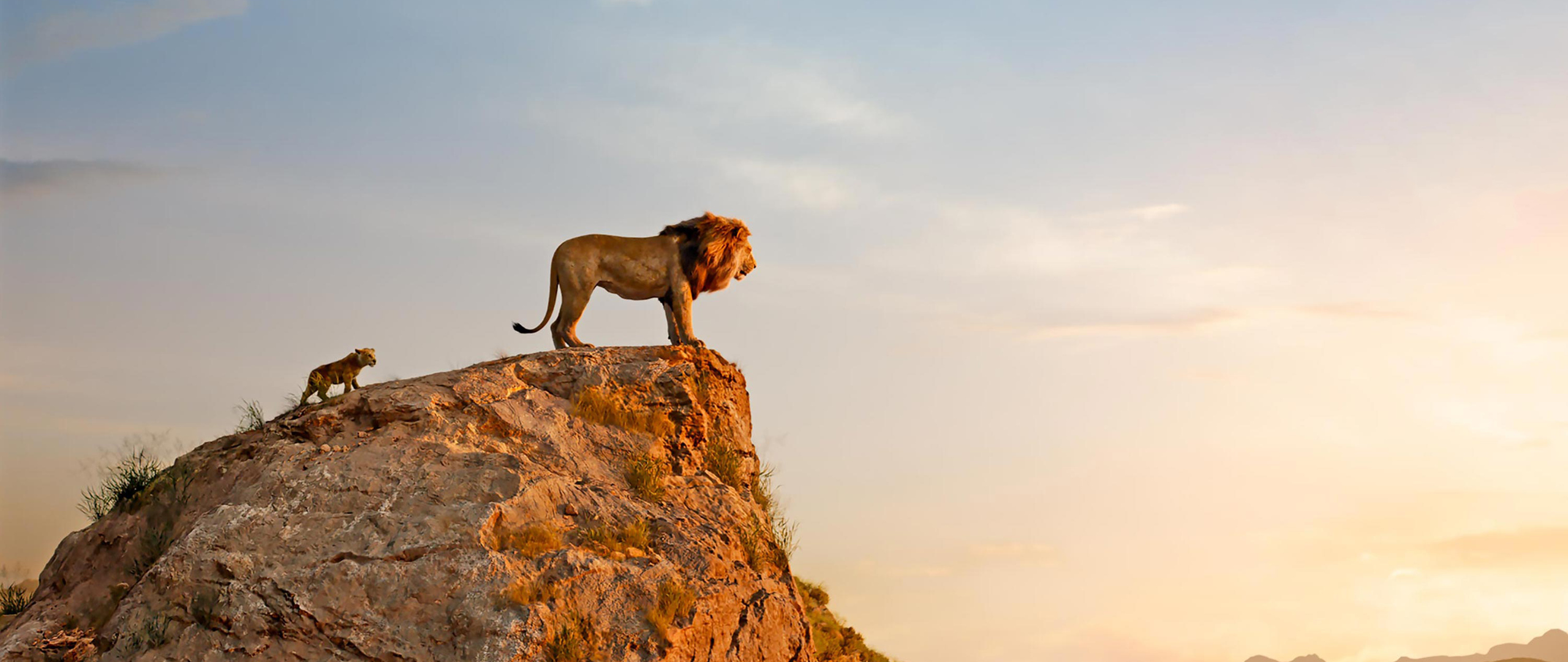 the-lion-king-2019-entertainment-weekly-6j.jpg