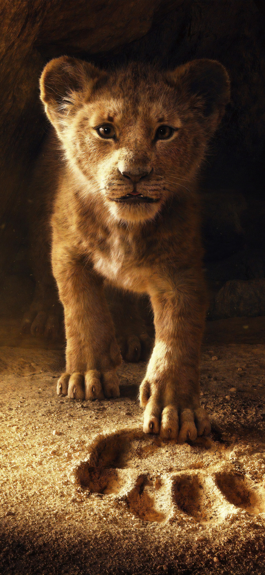 1125x2436 The Lion King 2019 Iphone XS,Iphone 10,Iphone X HD