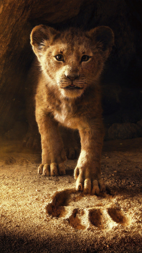 the-lion-king-2019-tc.jpg