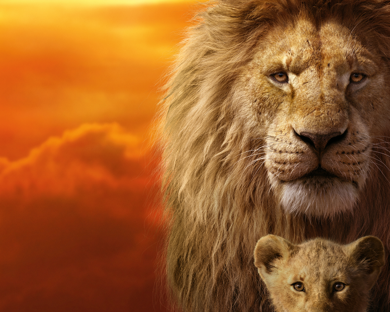 the-lion-king-8k-rl.jpg