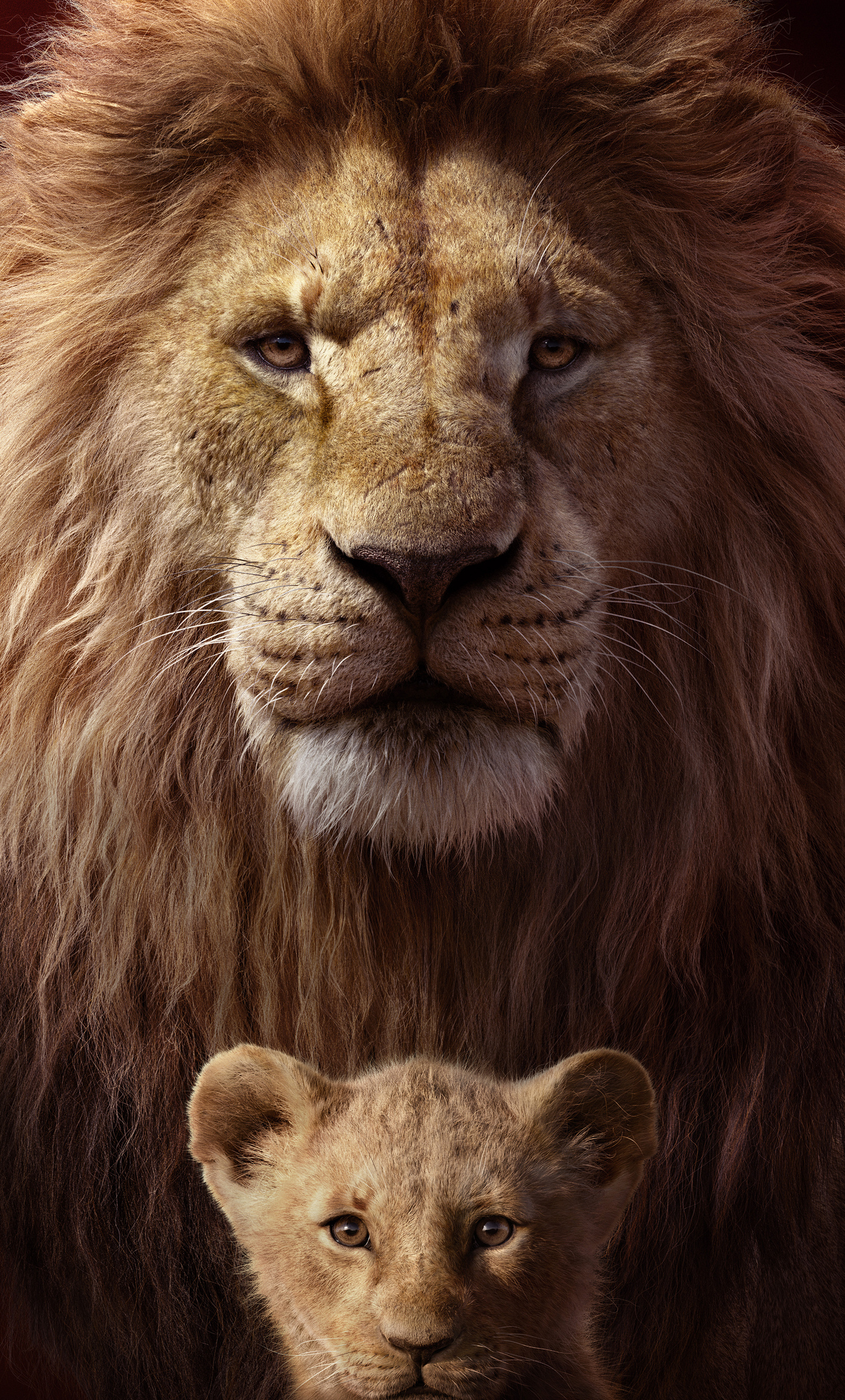 1280x2120 The Lion King Key Art 4k Iphone 6 Hd 4k