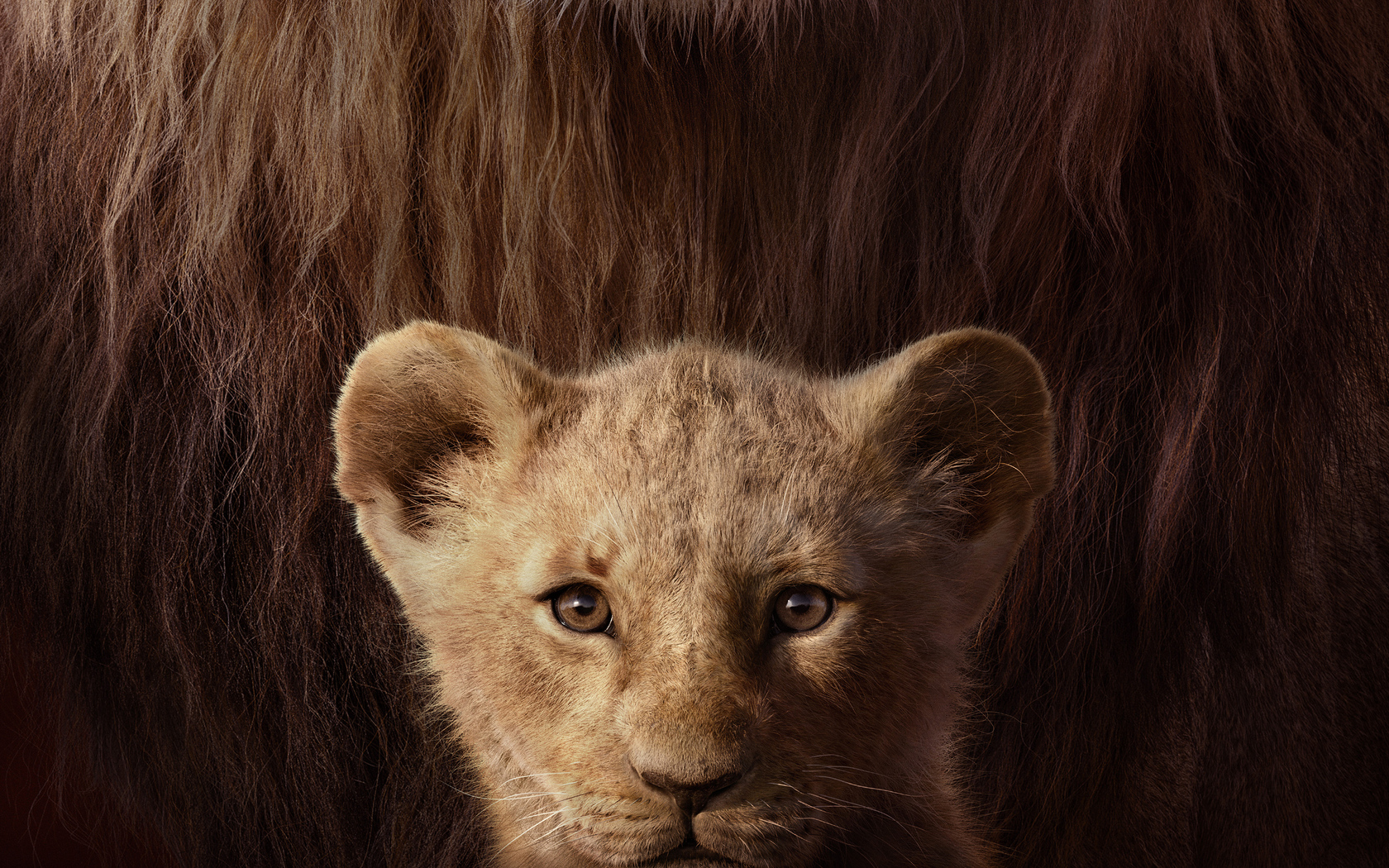 the-lion-king-key-art-4k-lw.jpg