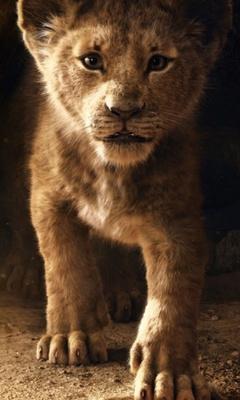 the-lion-king-simba-2019-4k-8o.jpg