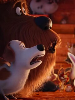 the-secret-life-of-pets-animated-movie.jpg