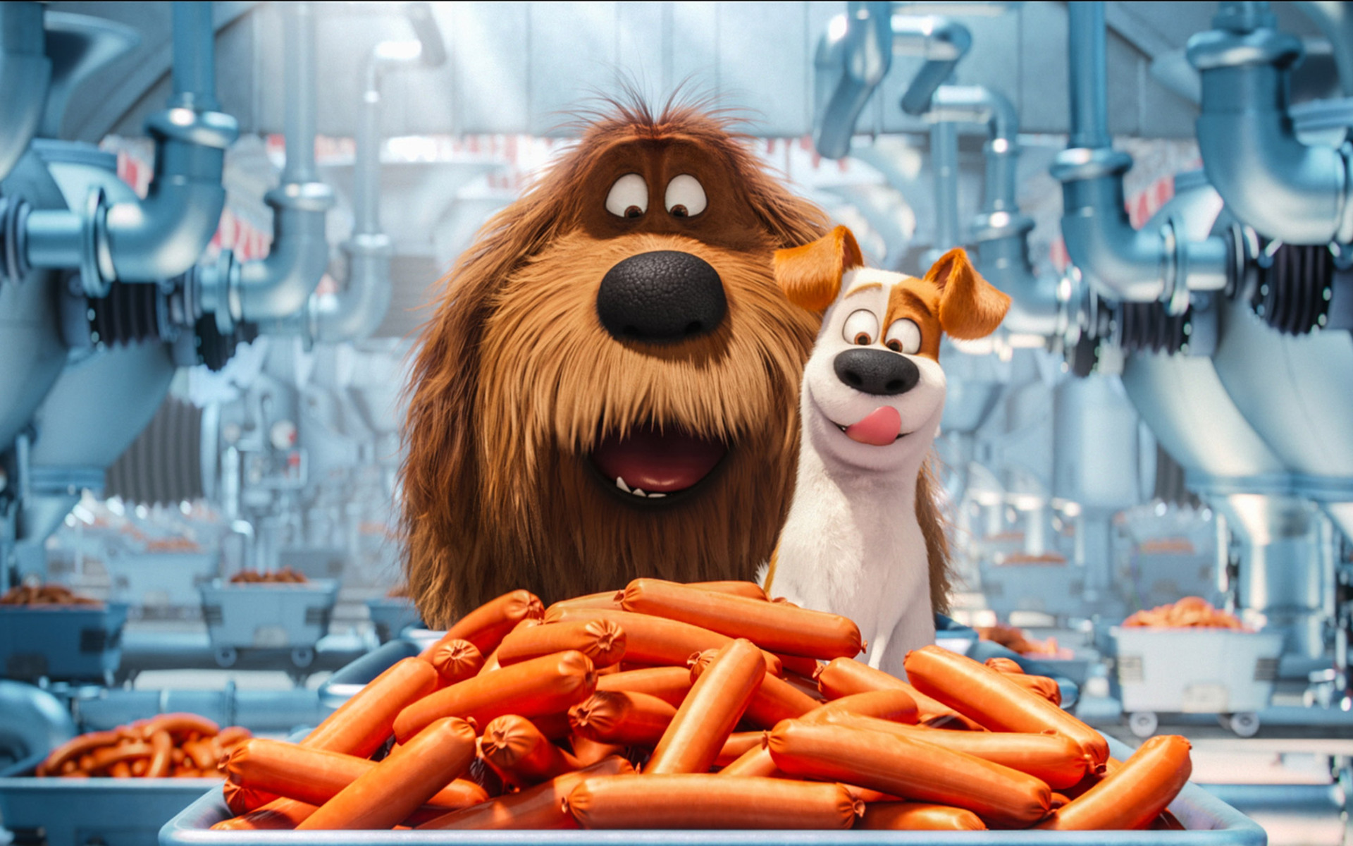 the-secrete-life-of-pets-animated-movie-on.jpg