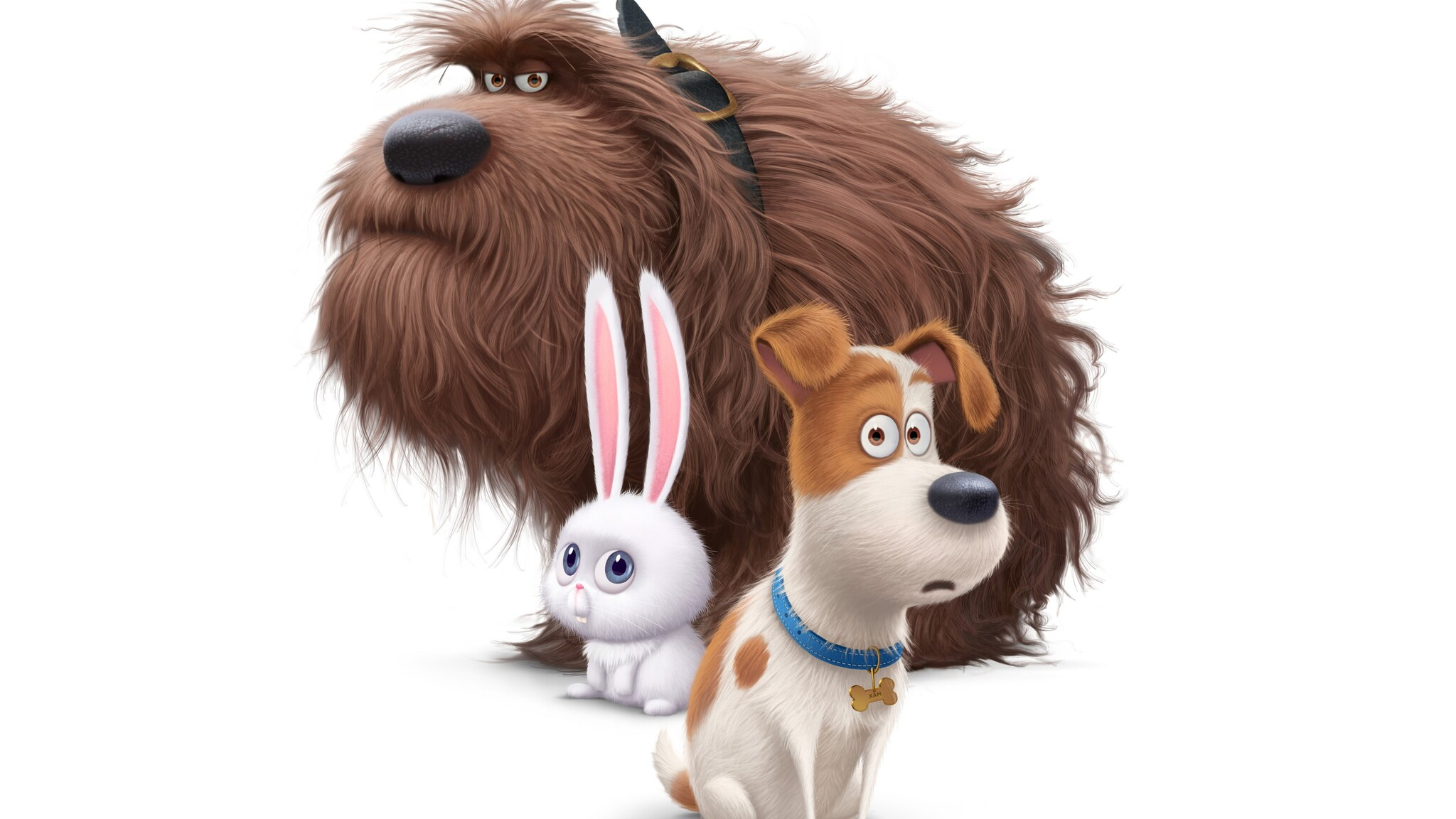 The Secret Life Of Pets 2016 Hindi Download: 2048x1152 The Secrete Life Of Pets Movie Dogs 2048x1152