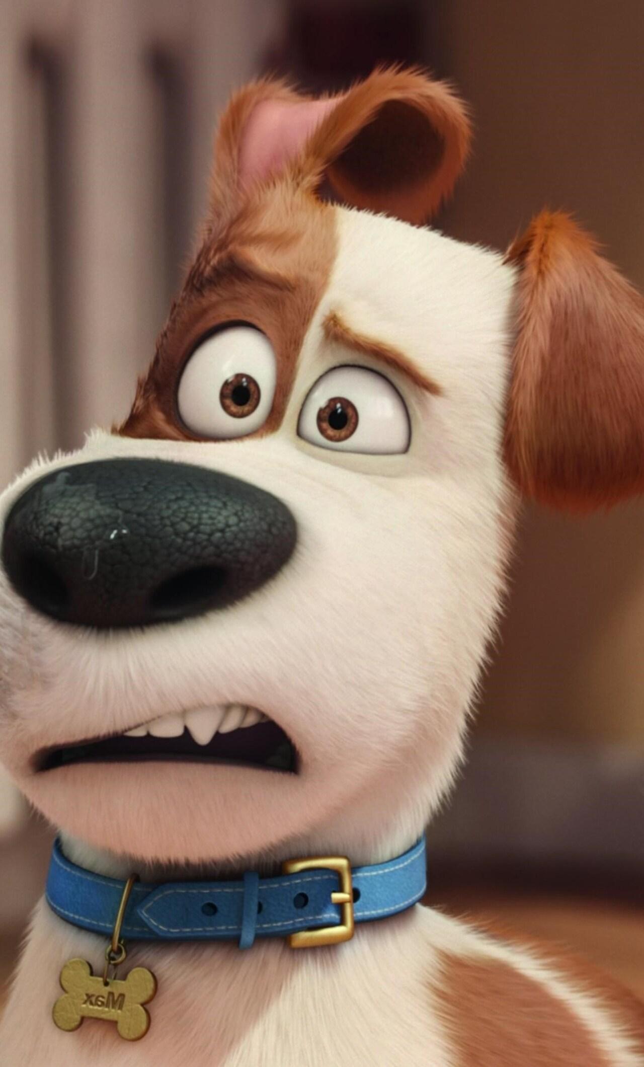 the-secrete-life-of-pets-movie-hd.jpg