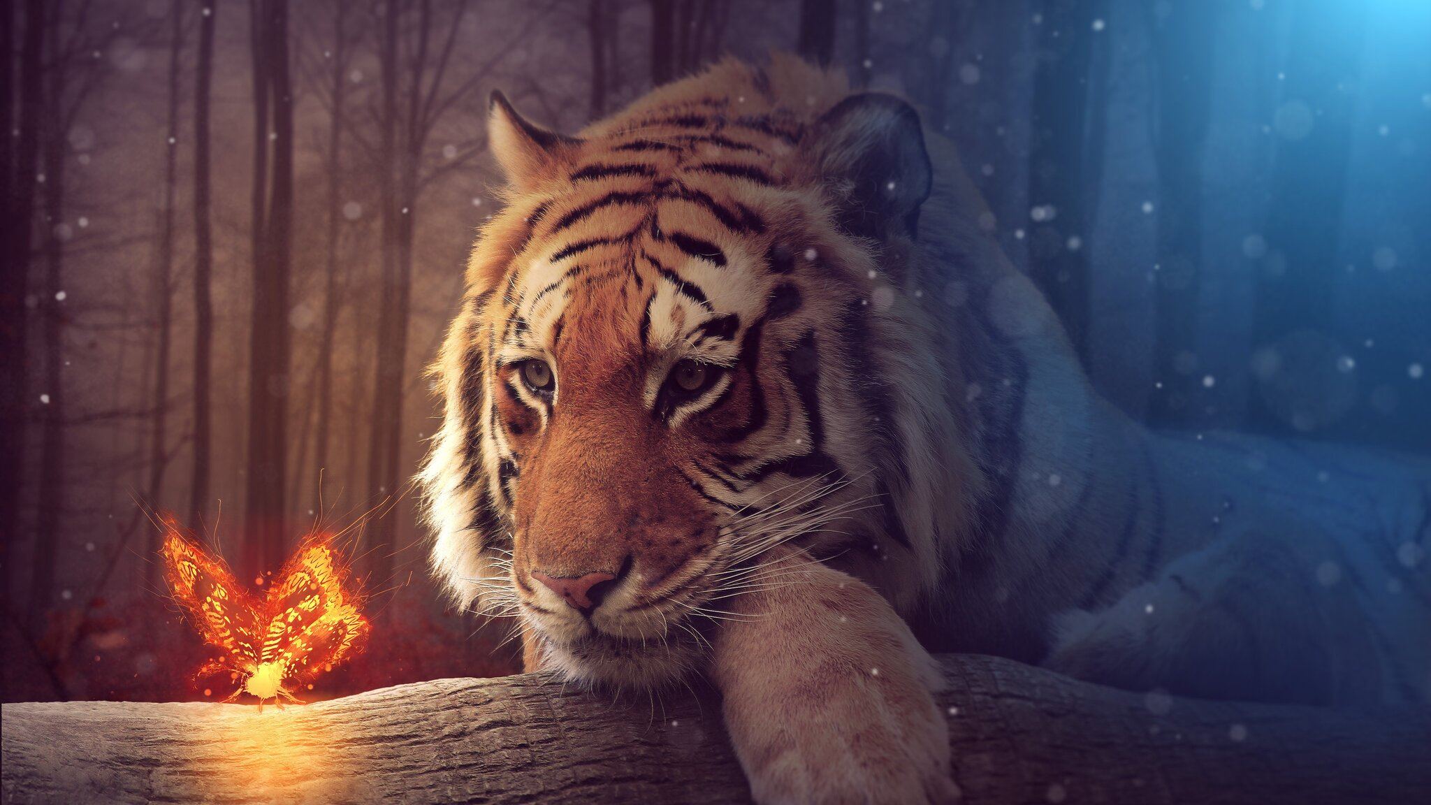 2048x1152 Tiger Dreamy Art 2048x1152 Resolution Hd 4k Wallpapers