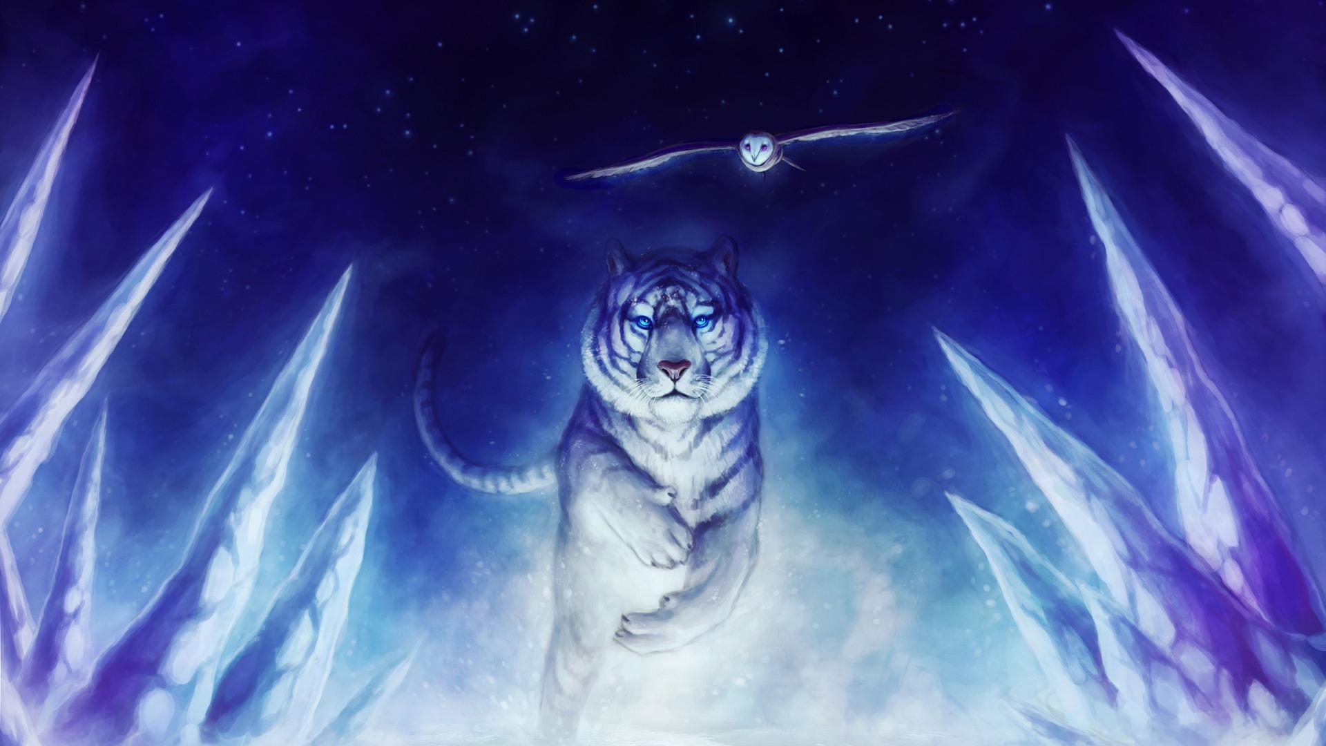 1920x1080 Tiger Owl 4k Laptop Full HD 1080P HD 4k Wallpapers