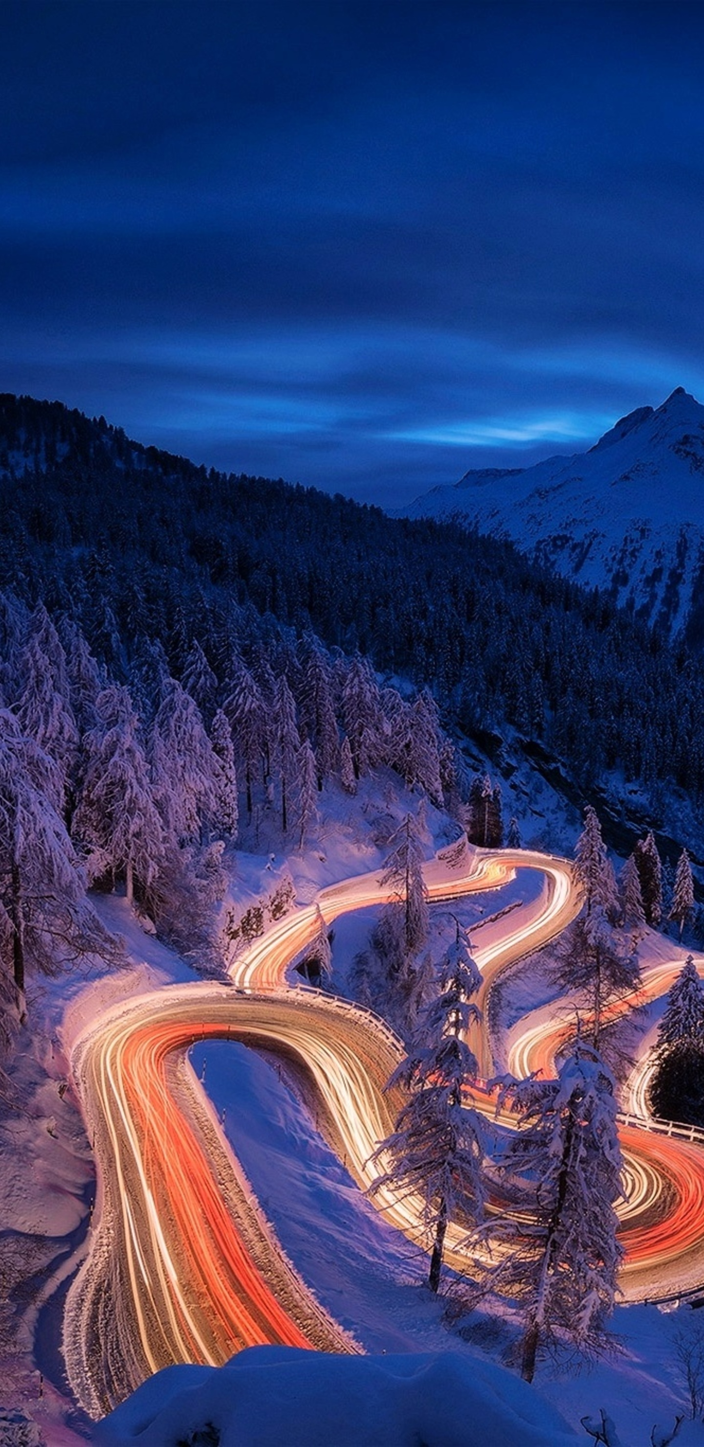 Time Lapse Photography Forest Landscape Mountain Night Road