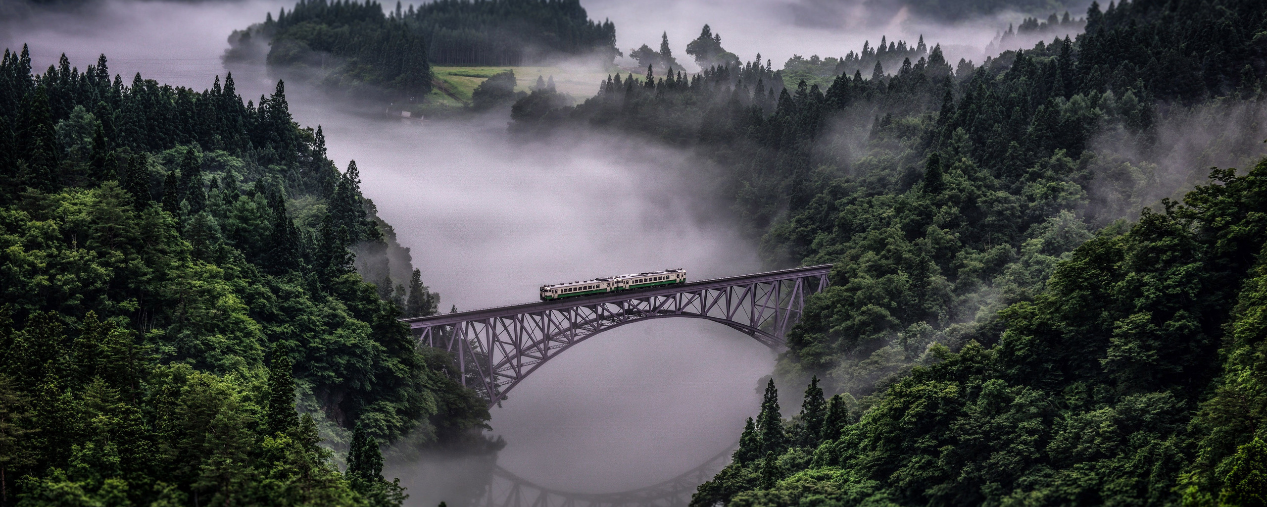 2560x1024 Train Going Over Bridge Surrounded By Trees And River 2560x1024 Resolution HD 4k Wallpapers, Images, Backgrounds, Photos and Pictures