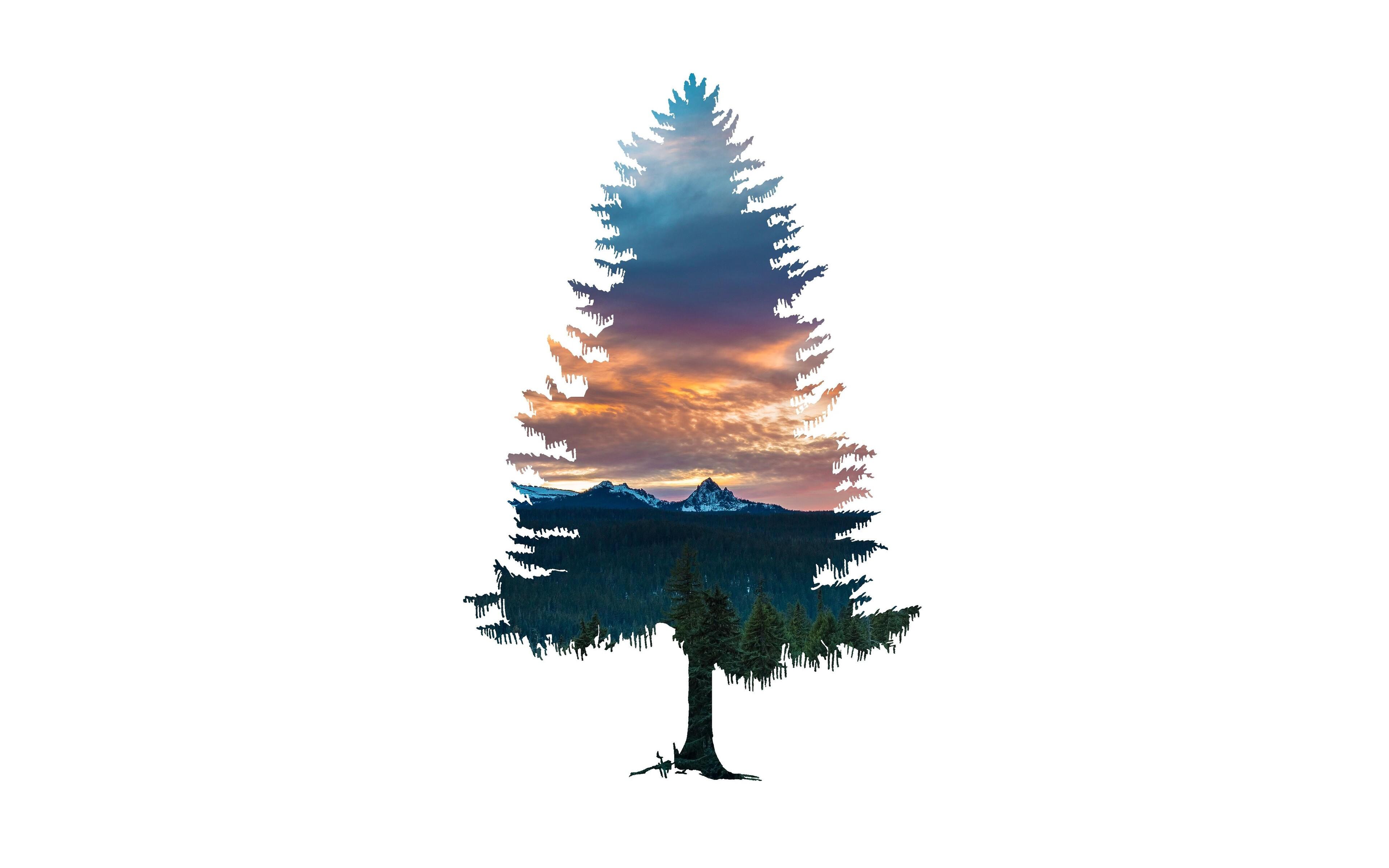 tree-abstract-nature-5k-gm.jpg