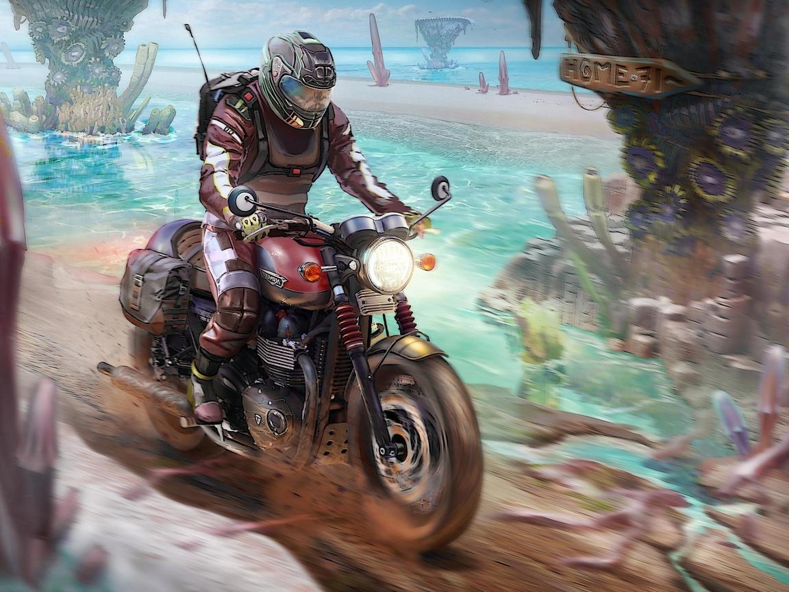 triumph-motorcyle-rider-ty.jpg