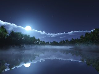 tropic-cold-night-4k-jn.jpg