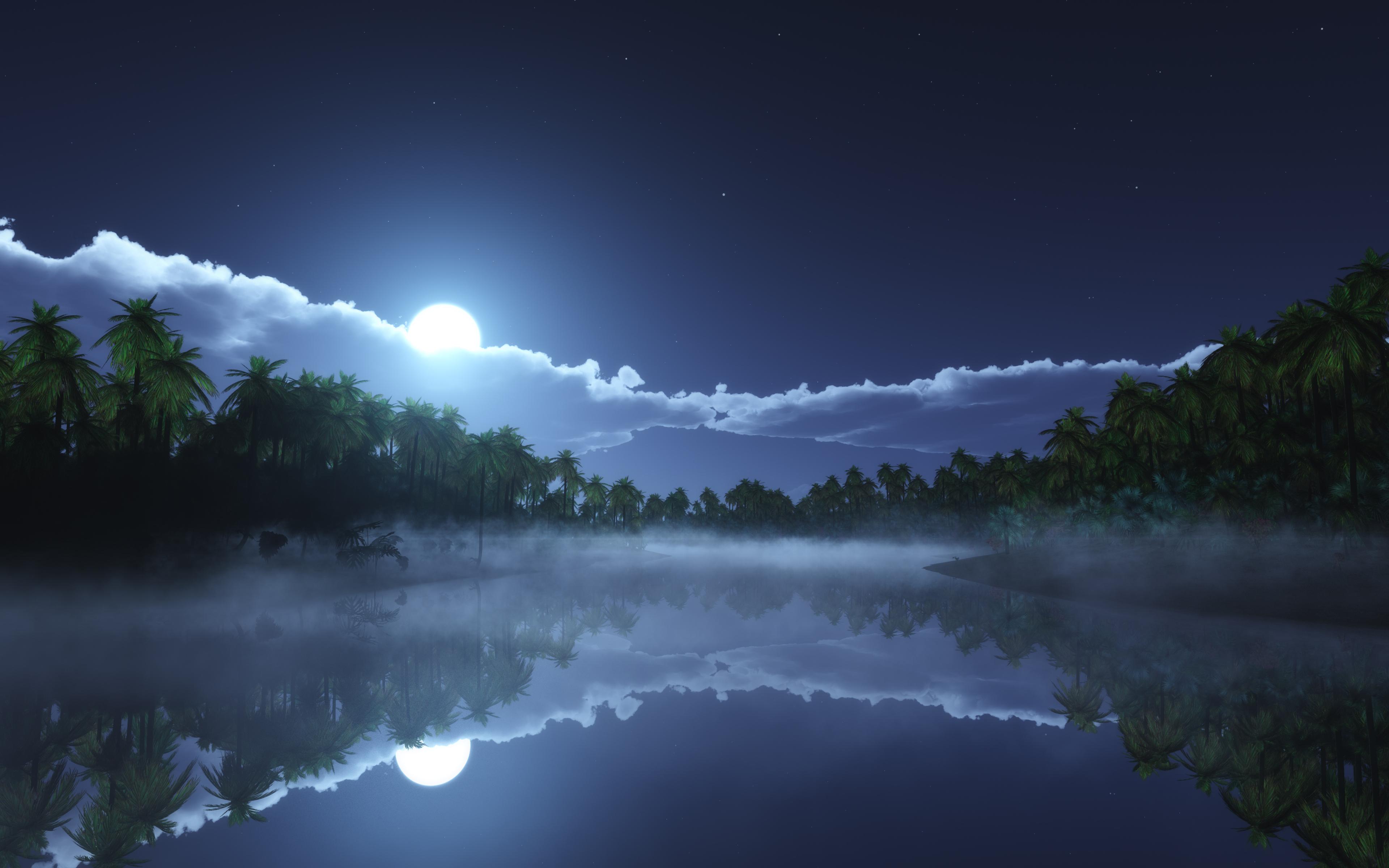 tropic-cold-night-4k-jn.jpg