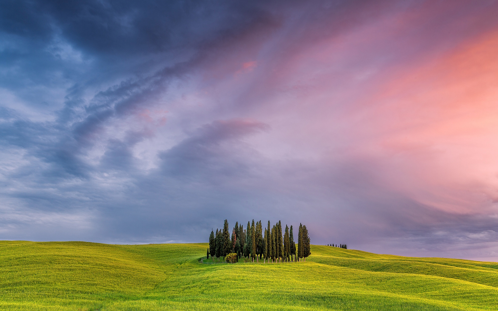 tuscany-field-in-italy.jpg