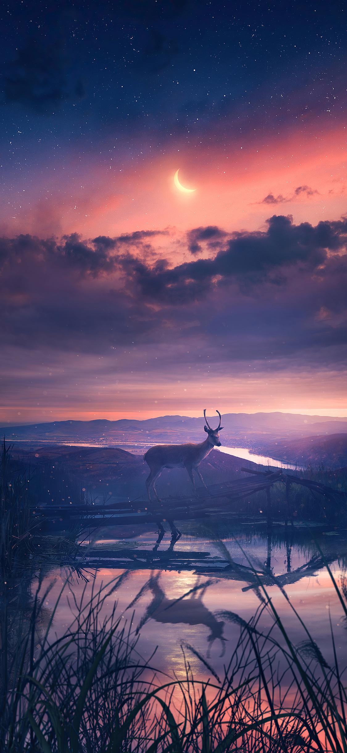 twilight-deer-4k-rc.jpg