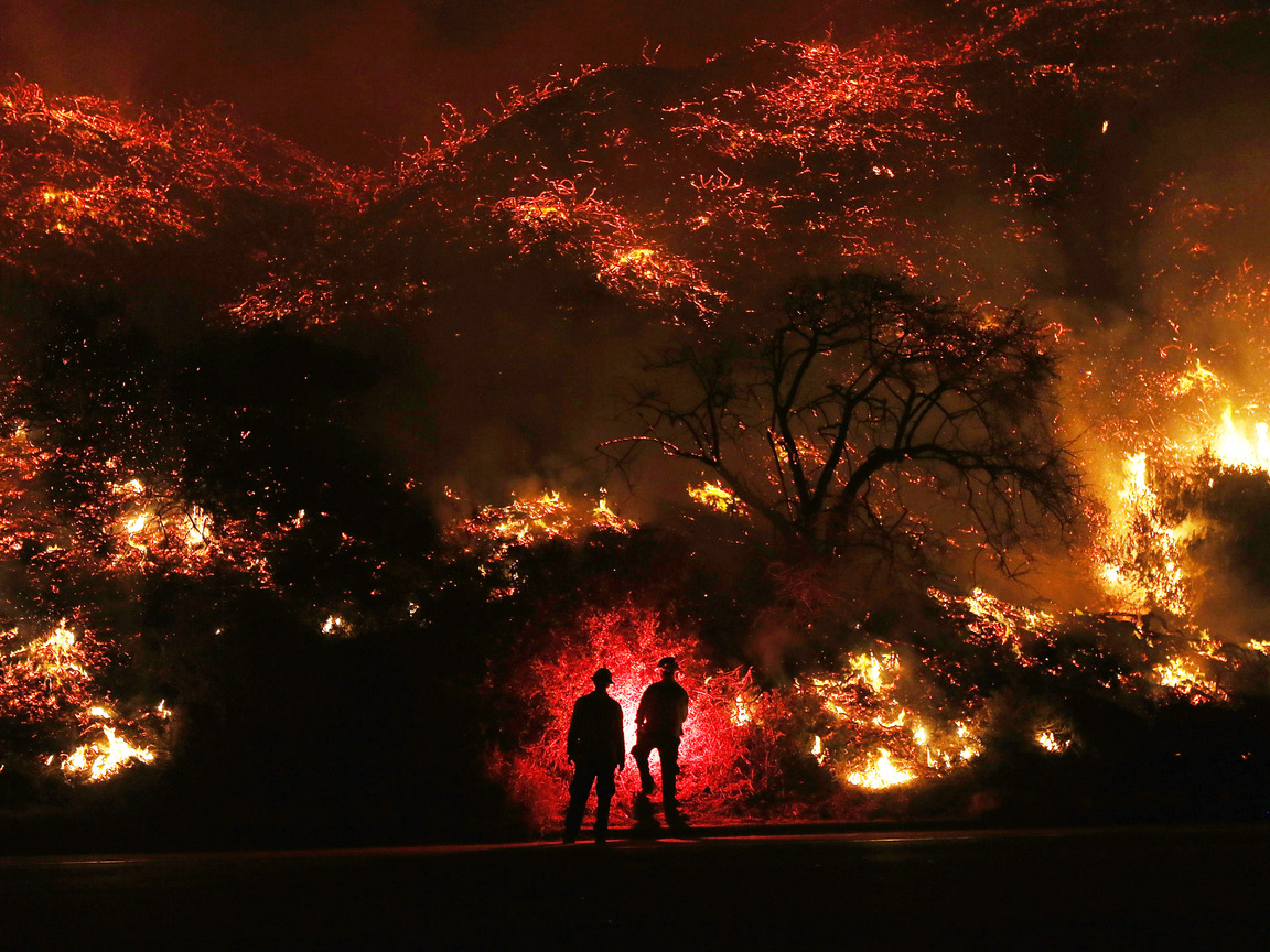 two-man-standing-in-front-of-forest-fire-52.jpg