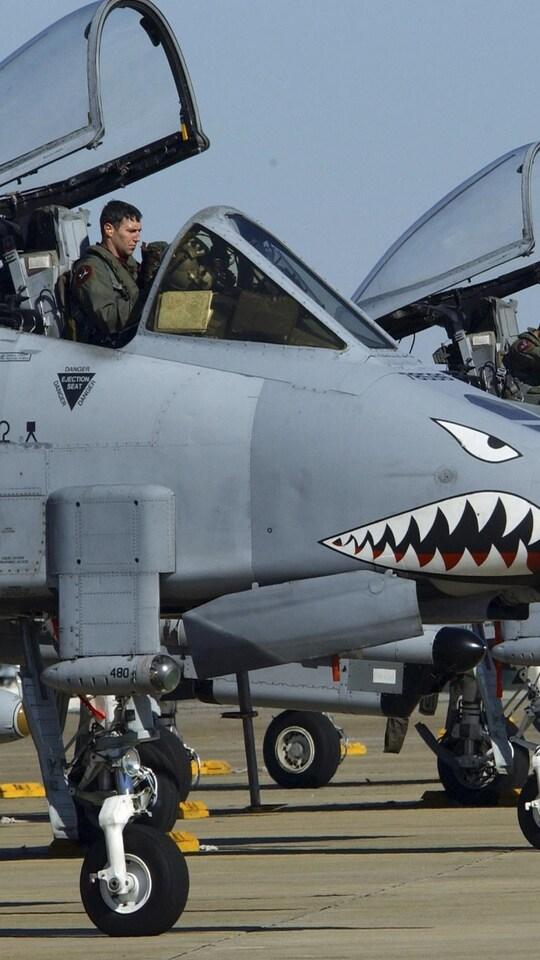 us-air-force-funny-wide.jpg