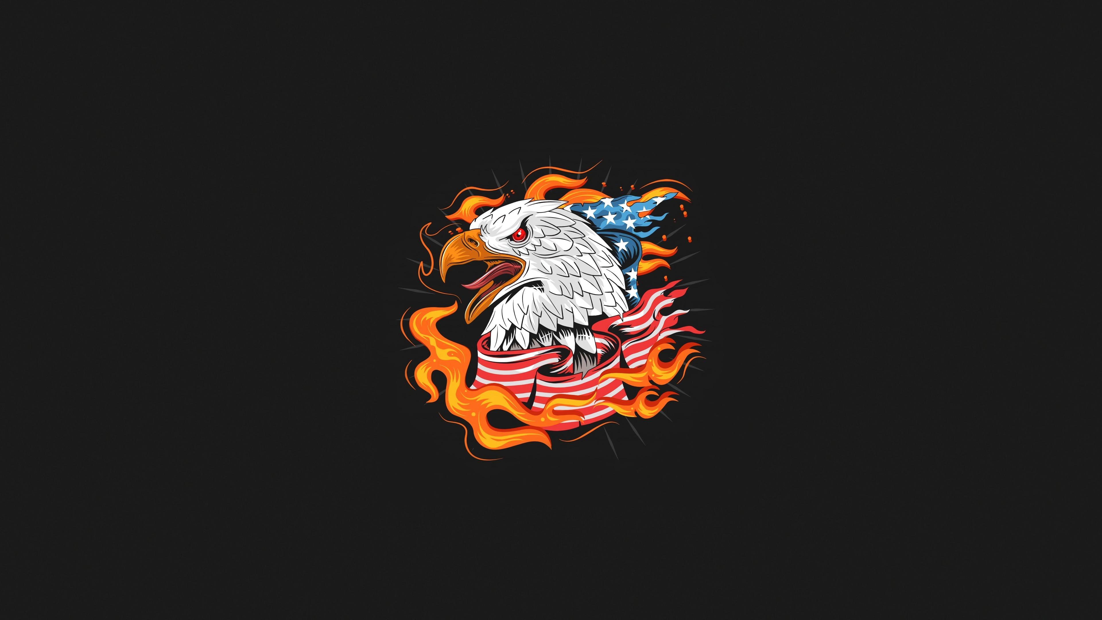 us-eagle-bird-minimal-4k-rg.jpg