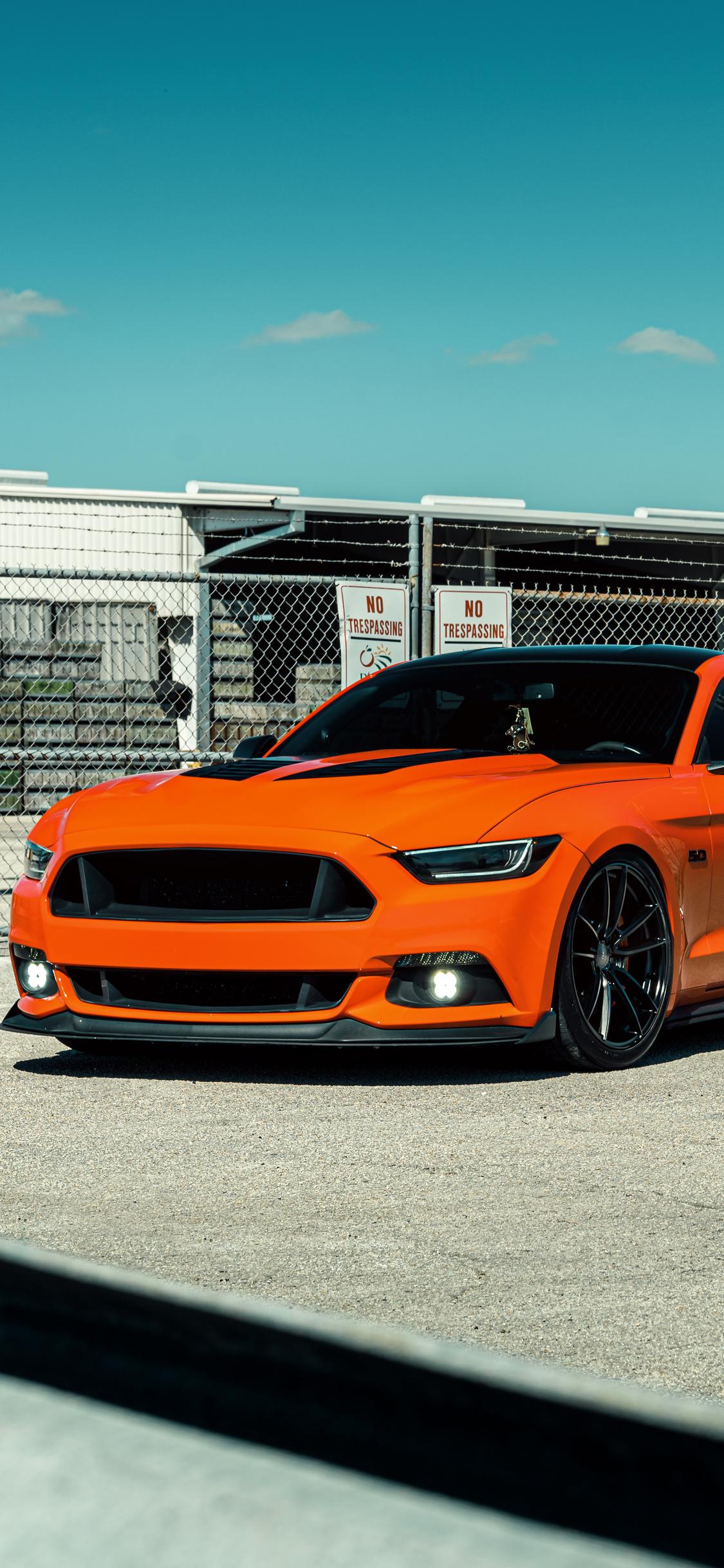 velgen-wheels-orange-mustang-8k-tn.jpg