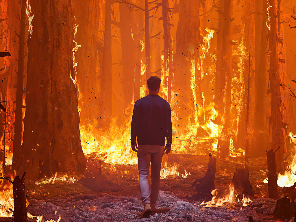walking-in-forest-fire-4k-61.jpg