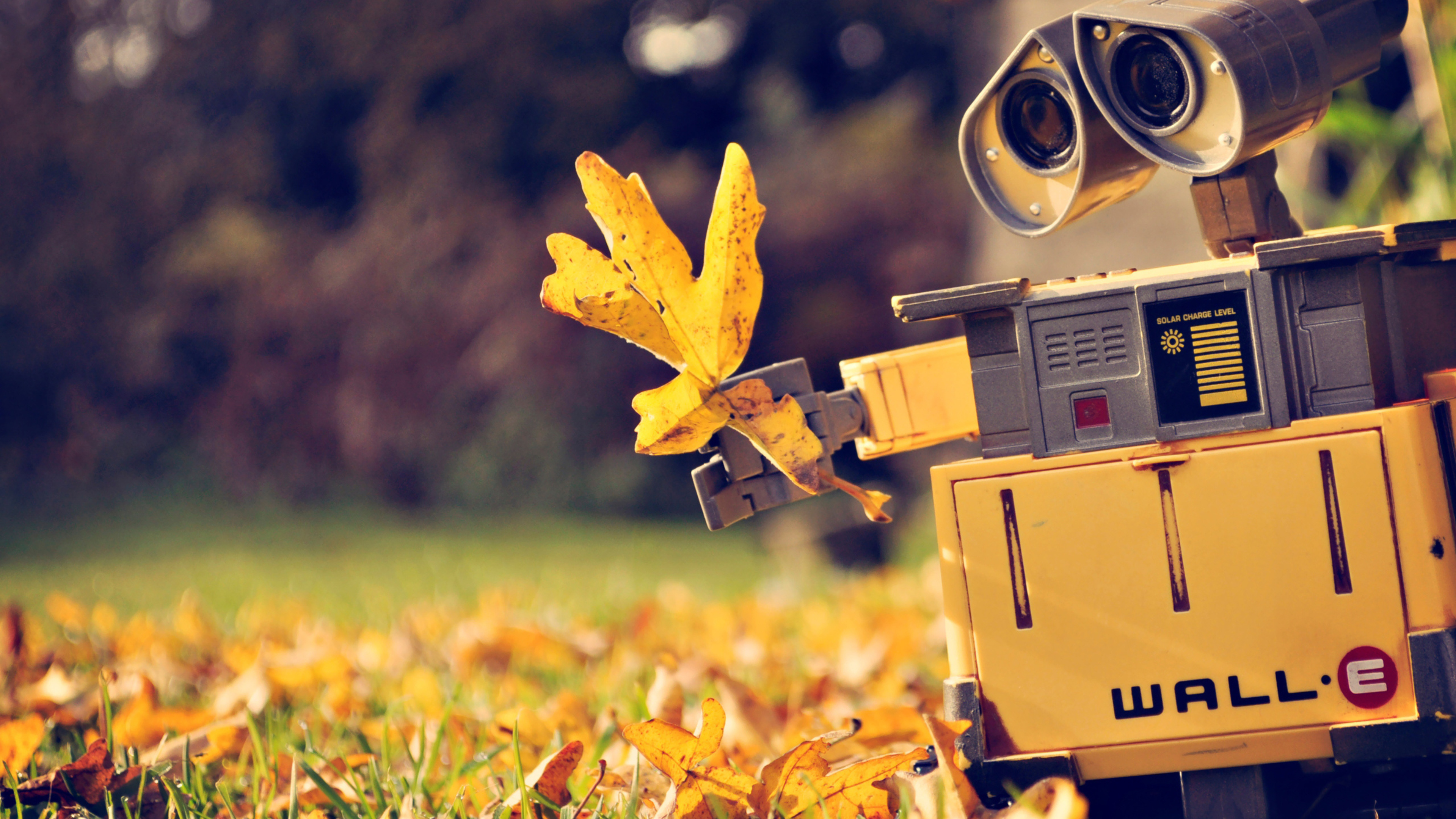 3840x2160 wall e movie 4k hd 4k wallpapers, images, backgrounds