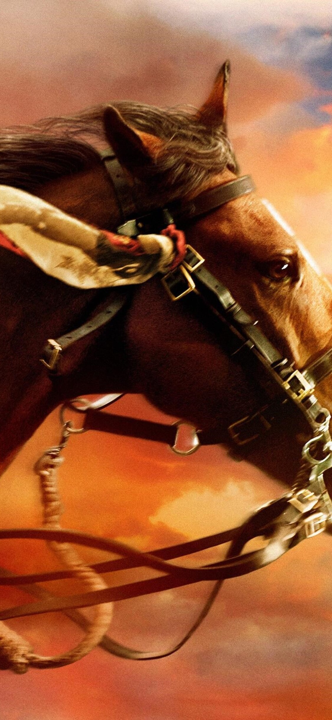 1125x2436 War Horse Iphone Xs Iphone 10 Iphone X Hd 4k Wallpapers Images Backgrounds Photos And Pictures