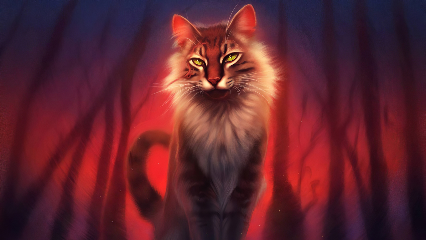 1360x768 Warrior Cat 4k Laptop Hd Hd 4k Wallpapers Images Backgrounds Photos And Pictures