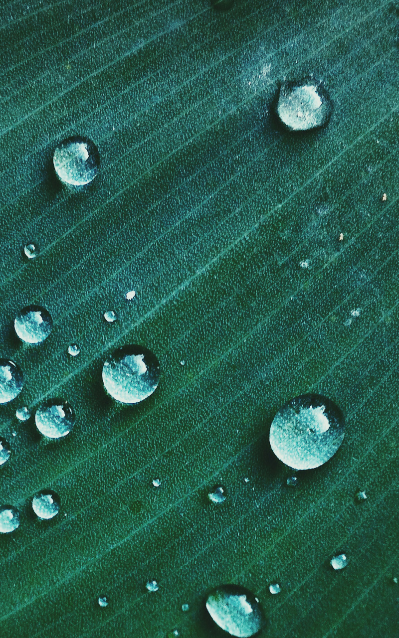 800x1280 Water Drop On Green Textile Macro Nexus 7 Samsung Galaxy Tab 10 Note Android Tablets Hd 4k Wallpapers Images Backgrounds Photos And Pictures