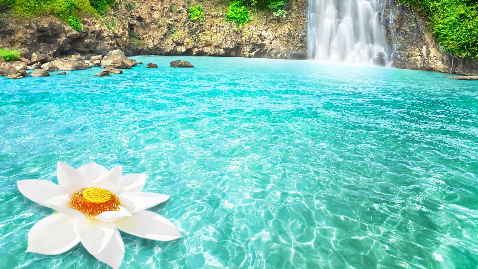 1920x1080 waterfall flowers laptop full hd 1080p hd 4k wallpapers