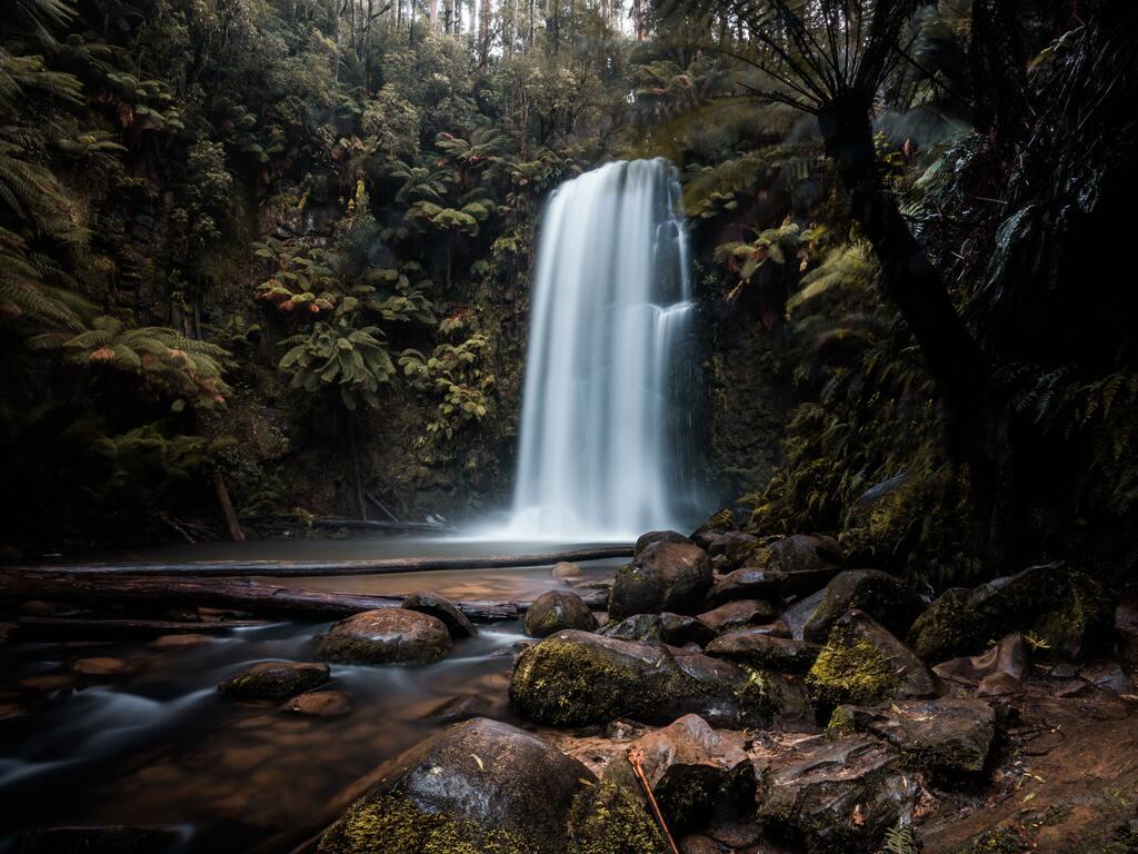 waterfall-forest-1a.jpg