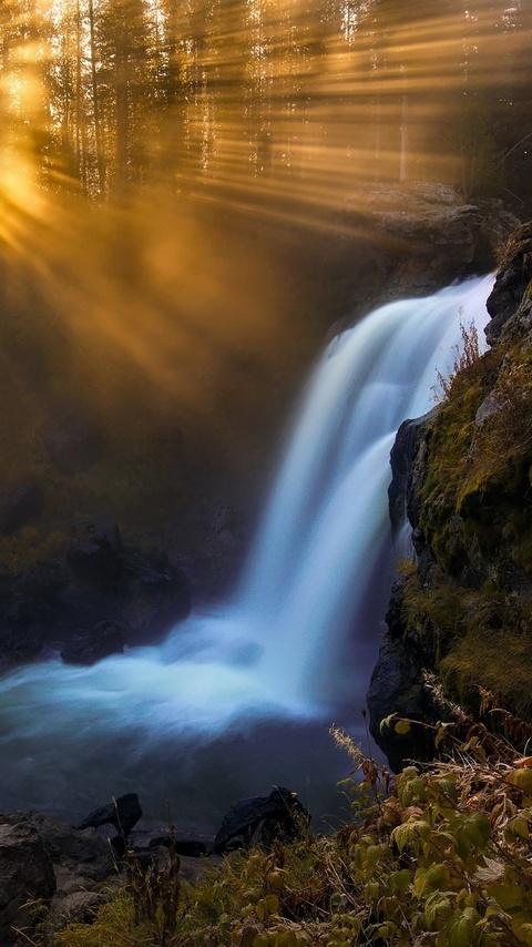 waterfall-in-forest-sunbeam-trees-ne.jpg