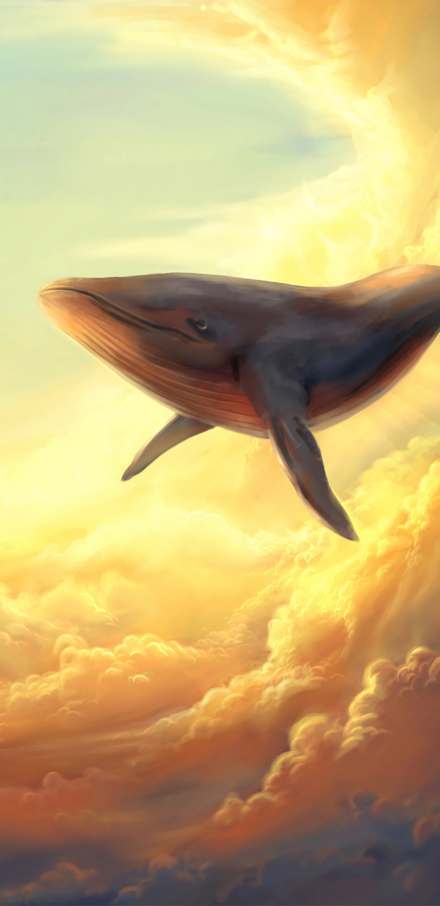 1440x2960 Whale In The Clouds Samsung Galaxy Note 9 8 S9 S8
