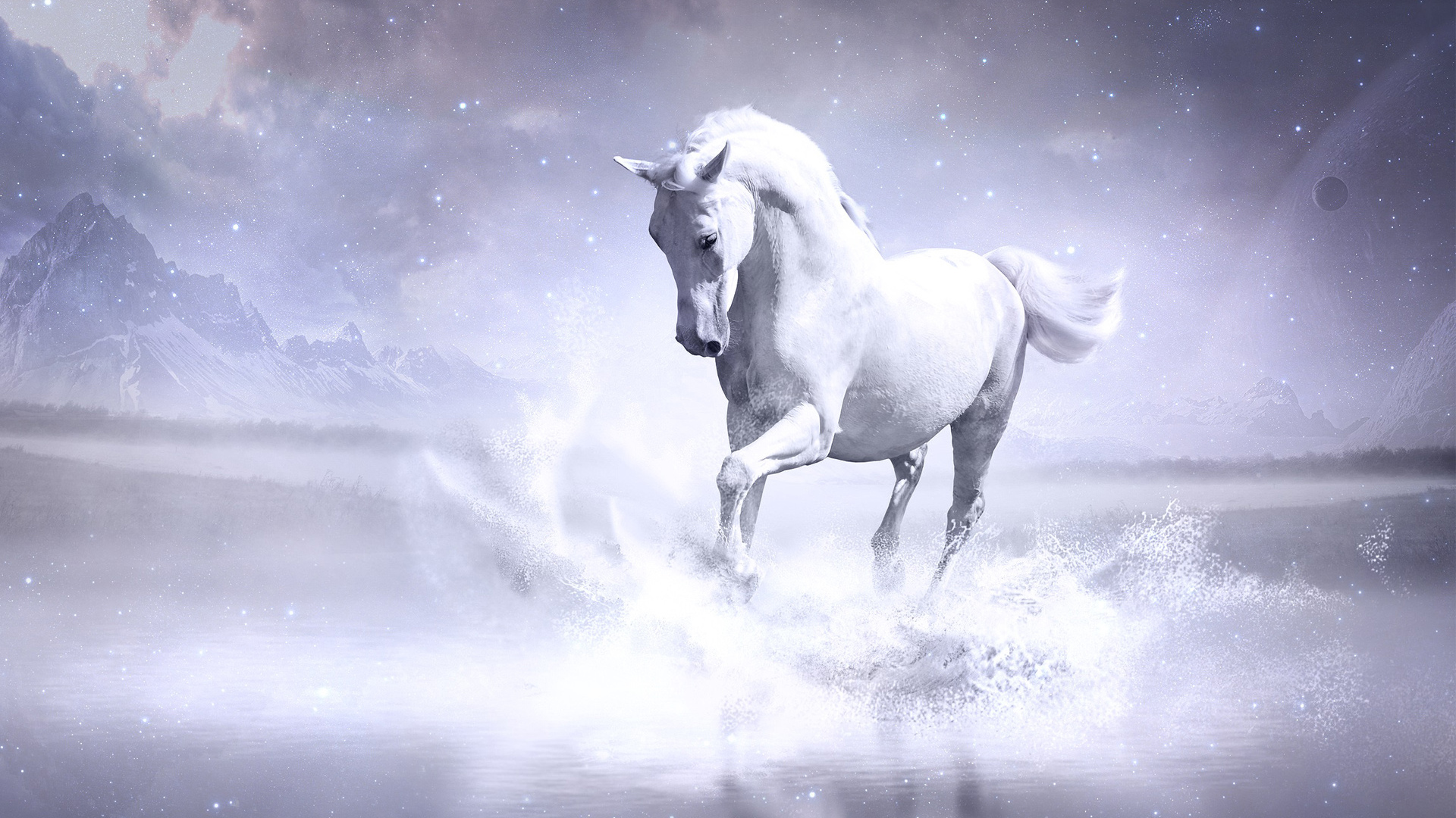 1920x1080 White Horse Laptop Full Hd 1080p Hd 4k Wallpapers Images Backgrounds Photos And Pictures